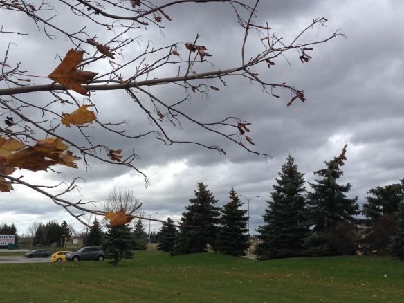 November wind and sky